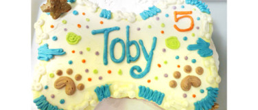 PAWTY CAKES